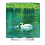 Swan Lake Shower Curtain by Judi Bagwell