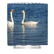 Swan Mates Shower Curtain by Sabrina L Ryan