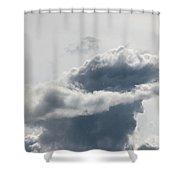 Swashbuckler Shower Curtain by Will Borden