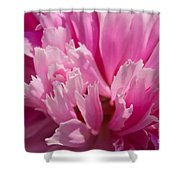 Temperament Shower Curtain by Angela Doelling AD DESIGN Photo and PhotoArt
