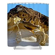 The Art Of Nature Shower Curtain by Kaye Menner