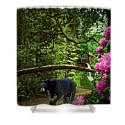 The Bear Went Over the Mountain Shower Curtain by Lianne Schneider