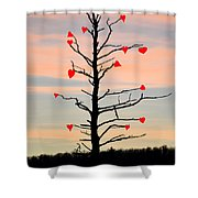 The Fall Of Love Shower Curtain by Bill Cannon
