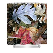The Gathering Shower Curtain by Trish Hale