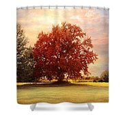 The Healing Tree  Shower Curtain by Jai Johnson
