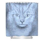 The Kitten Shower Curtain by Jack Skinner