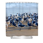 The Monday Morning Meeting Shower Curtain by Susanne Van Hulst