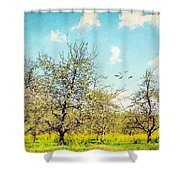 The Orchard Shower Curtain by Darren Fisher
