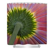 The Other Side Shower Curtain by Susan Candelario