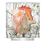 The Rose Shower Curtain by Andee Design