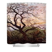 The Tree Of Crows Shower Curtain by Caspar David Friedrich