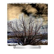Touch Of Frost Shower Curtain by Will Borden