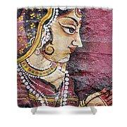 Traditional Painting On A Wall Jodhpur Shower Curtain by David DuChemin