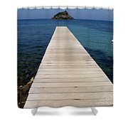 Tranquility  Shower Curtain by Lainie Wrightson