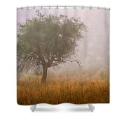 Tree In Fog Shower Curtain by Debra and Dave Vanderlaan