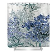 Trees Above Shower Curtain by Rebecca Margraf