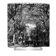 Trees On The Mall In Central Park In Black And White Shower Curtain by Rob Hans