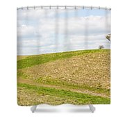 Treesome  Shower Curtain by Semmick Photo