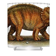 Triceratops Shower Curtain by Roger Hall and Photo Researchers