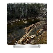 Trout Fishery Shower Curtain by Skip Willits