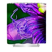 Twisted Shadows Shower Curtain by Judi Bagwell