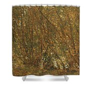 Under The Alders Shower Curtain by Childe Hassam