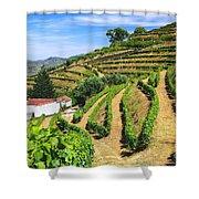 Vineyard Landscape Shower Curtain by Carlos Caetano