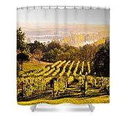 Vineyard Shower Curtain by Voisin and Phanie and Photo Researchers