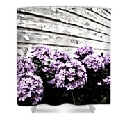 Vintage Flowers Shower Curtain by Tamyra Ayles