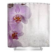 Vintage Orchids Shower Curtain by Jane Rix