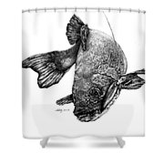 Walleye Shower Curtain by Kathleen Kelly Thompson