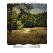 Wandering Path I Shower Curtain by Tamyra Ayles
