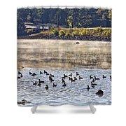 Water Fowl At Lake Wilhelmina Arkansas Shower Curtain by Douglas Barnard