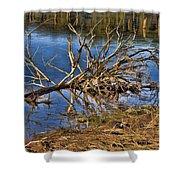 Waterlogged Tree Shower Curtain by Douglas Barnard