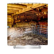 Watersfield Stable Shower Curtain by Dawn OConnor