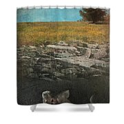 What Lies Below Shower Curtain by Laurie Search