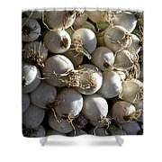 White Onions Shower Curtain by Susan Herber