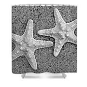White Starfish In Black And White Shower Curtain by Sandi OReilly