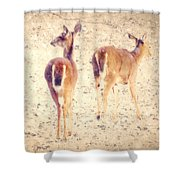 White Tails In The Snow Shower Curtain by Amy Tyler