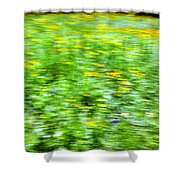 Wildflowers And Wind 2 Shower Curtain by Skip Nall