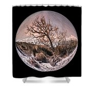 Windswept At Driftwood Beach II Shower Curtain by Debra and Dave Vanderlaan