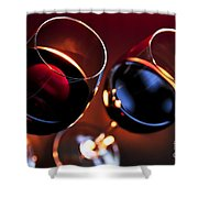 Wineglasses Shower Curtain by Elena Elisseeva
