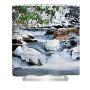 Winter Shower Curtain by Darren Fisher