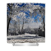 Winter Morning Shower Curtain by Lois Bryan
