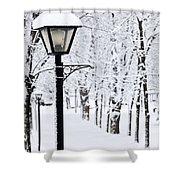 Winter Park Shower Curtain by Elena Elisseeva