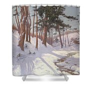 Winter Woodland With A Stream Shower Curtain by James MacLaren