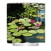 Wishes Among The Water Lilies Shower Curtain by Methune Hively