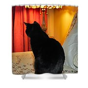 Witches Cat Shower Curtain by Michelle Milano