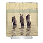 Wooden Piles Shower Curtain by Joana Kruse
