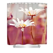 Xposed - S03 Shower Curtain by Variance Collections